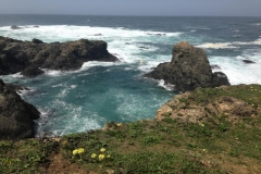 mendocino-bed-breakfast-gallery-fifteen