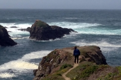 mendocino-bed-breakfast-gallery-twelve